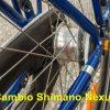 Cambio Shimano nexus 7 velocità