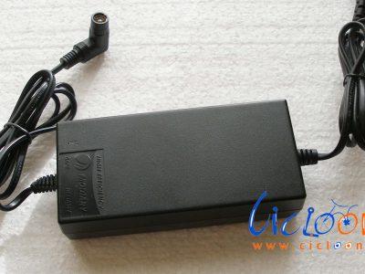 caricabatterie economico 36V connessione rca