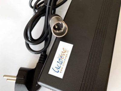 caricabatterie 48V litio attacco 3 pin maschio
